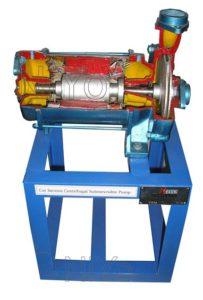 Cut Section of Pumps - CUT09